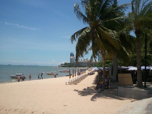 パタヤビーチとヤシの木の写真
