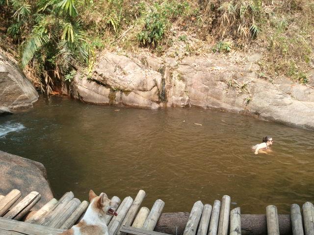 山の中のプール