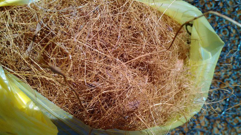 ヤシの実の繊維