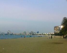 パタヤビーチ【カブとタイ】