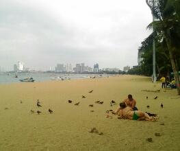 パタヤビーチの海の家、有料ビーチチェア、サマーベッドが全て撤去される日