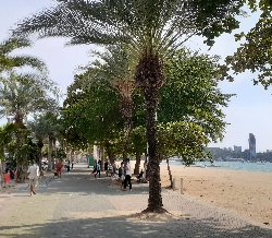 規制緩和初日のパタヤビーチ:kabutotai.net