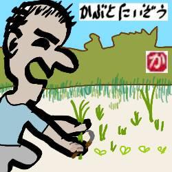朝飯前に草むしり:kabutotai.net