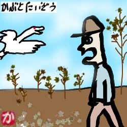 那覇の散歩:kabutotai.net