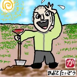趣味の園芸、畑作りに発奮忘食