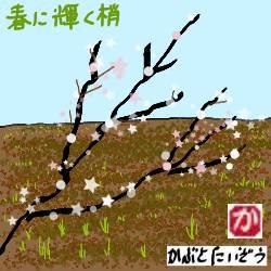 春に輝く梢:kabutotai.net