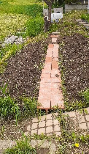 趣味の園芸畑1kabutotai.net