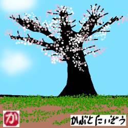 試行錯誤の上で会得した梅の木の剪定方法、8つの原理原則、ポイント、注意点、コツ