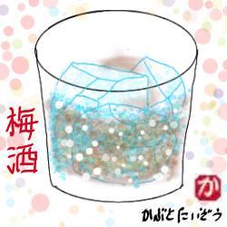 梅酒の作り方:kabutotai.net