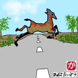 【バイクで北海道一周】回顧録:北海道の田舎道をバイクで通行中に、最も恐ろしいのは鹿の出現